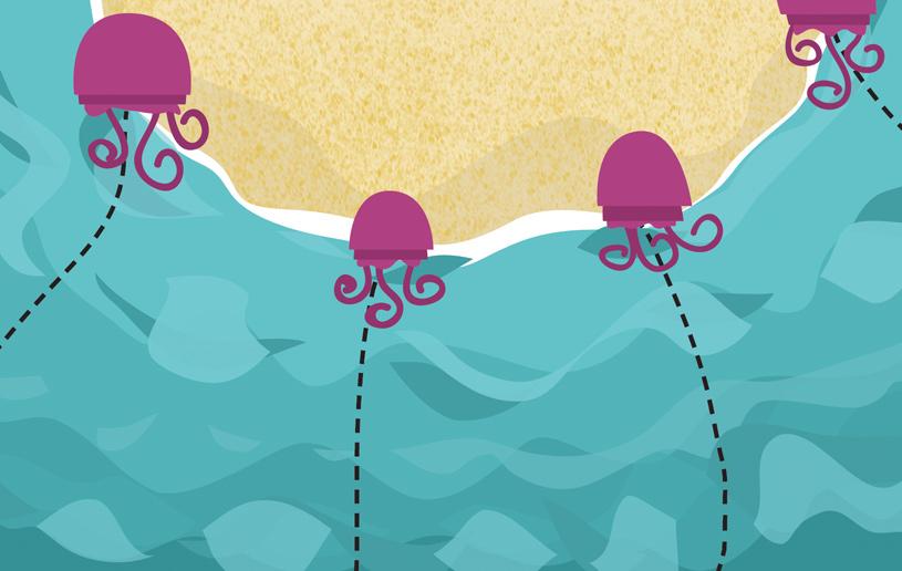 Jellyfish Ministry